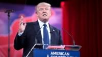 A marketer's take on the Trump era