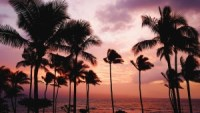 Could Hawaii Be The First State To Offer A Basic Income?