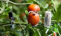 Farm to Fridge: an industrial IoT (IIoT) love story