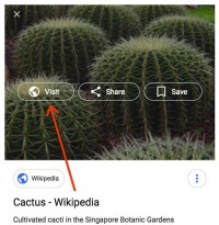 Google Search Removes 'View Image,' Sets Precedent