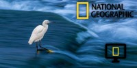 National Geographic, Sprint Launch Quest To Find Innovation In Wireless Tech