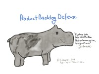 Product Backlog Defense
