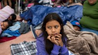 How to help migrant children swept up by ICE