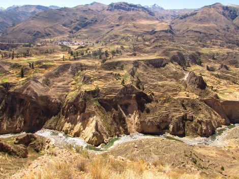 Terraced farmland in Peru