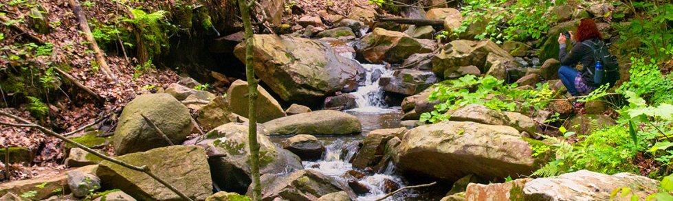 Steinke Stream