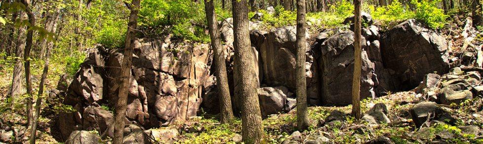 steinke2