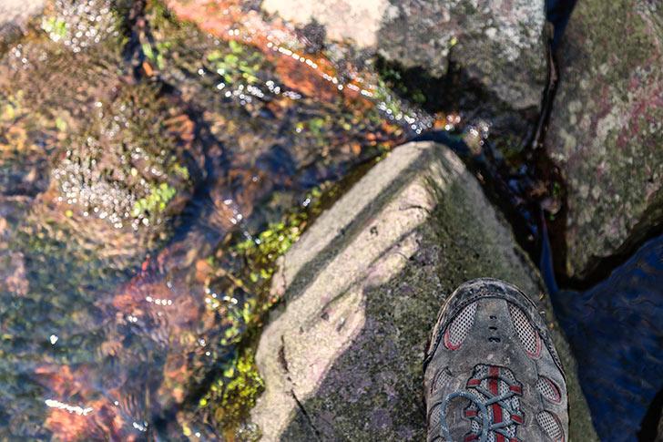 Steinke Creek Scramble
