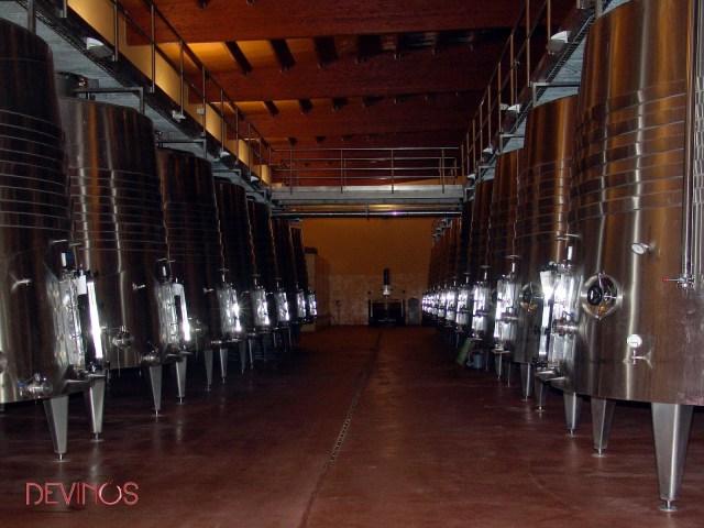 Campo de depósitos de fermentación troncocónicos (Bodegas Añadas - Care Cariñena). Fuente: Devinos con Alicia