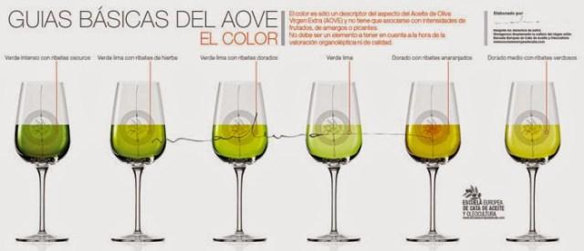 El color en el Aceite de Oliva Virgen Extra. Fuente [en línea]: www.xn--marlunavillacaas-kub.com