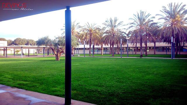 Jardín del campus de la Escuela de Hostelería y Turismo de Castellón. Fuente: Devinos con Alicia