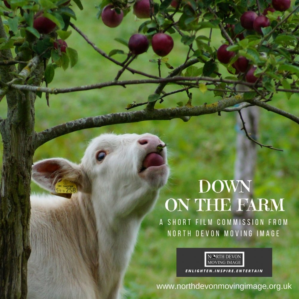 down on the farm short film commission north devon