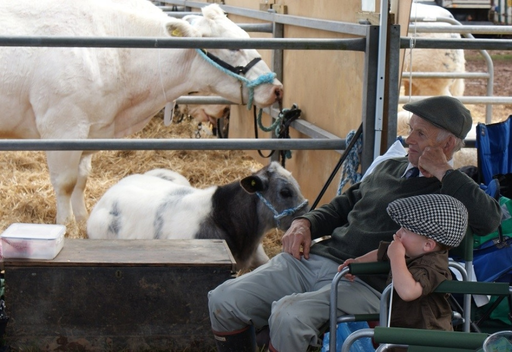 Down on the farm with a granddad type farmer and a baby farmer sitting outside a cattle shed