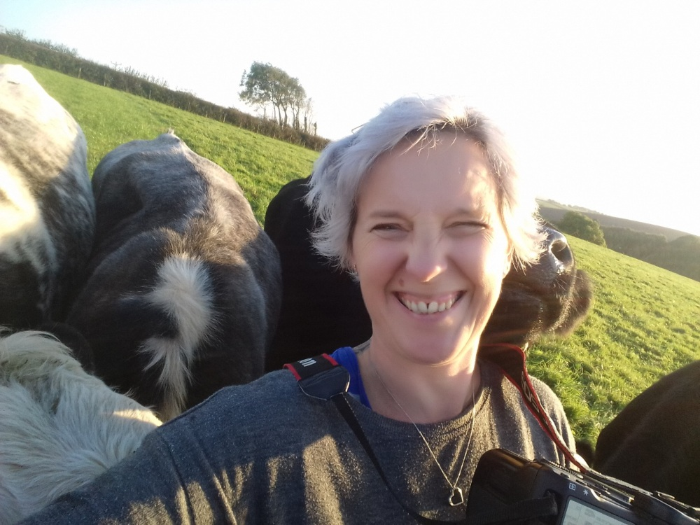a woman takes a selfie as she is surrounded by cows