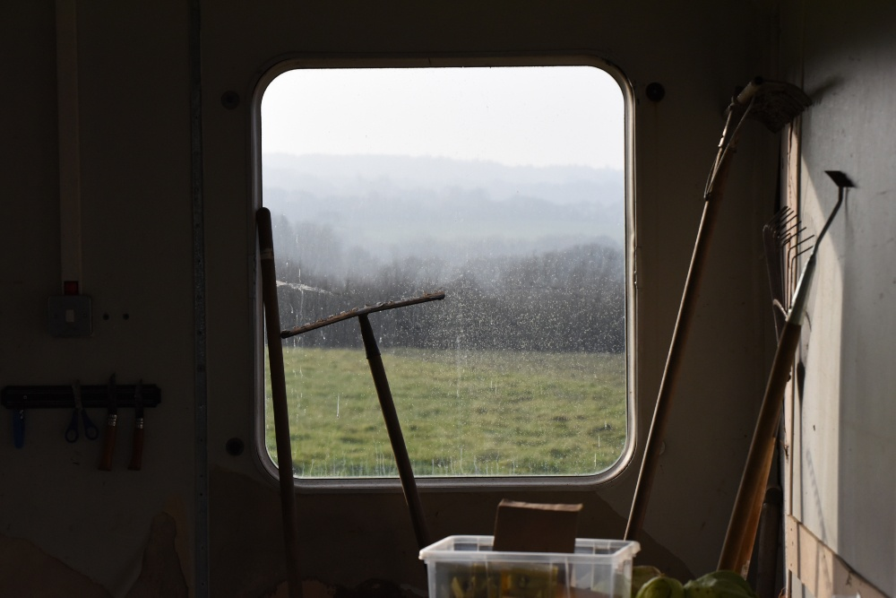 a window looking out on the farm - a still from the Bark Bark film