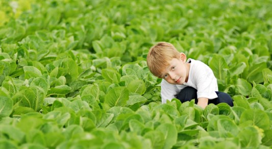 Boy on farm1
