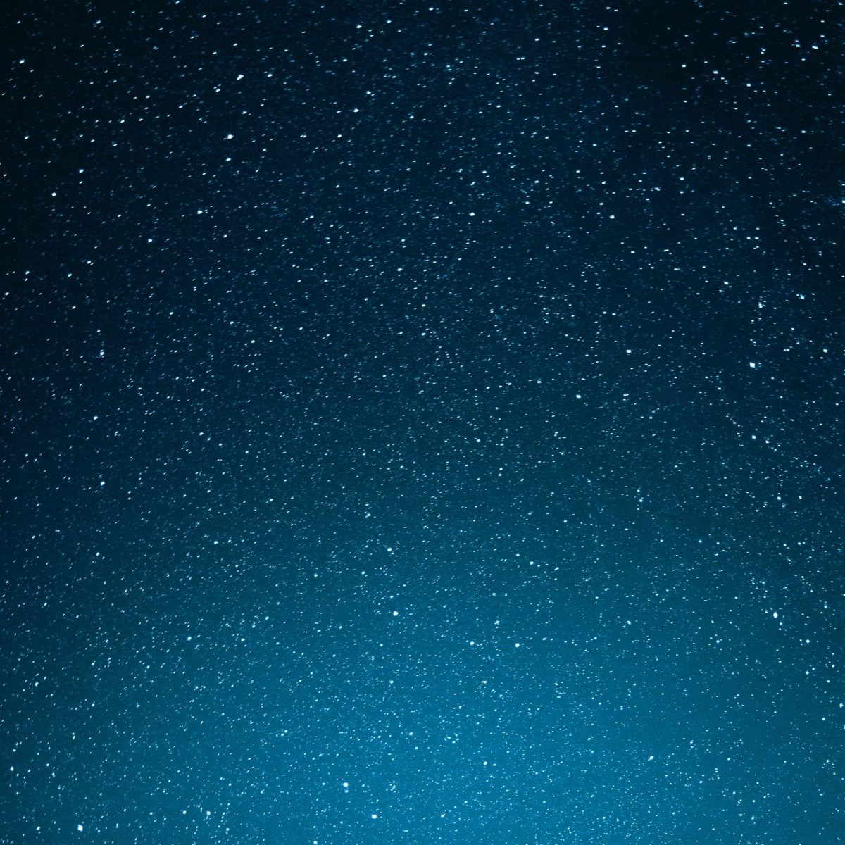 a very starry sky, gradients from top to bottom of dark to lighter blue