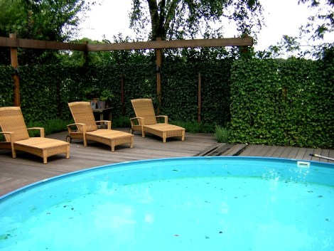 Poolside Green Living Fence