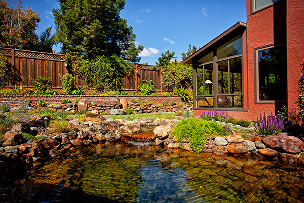 Natural Pond Design And Construction
