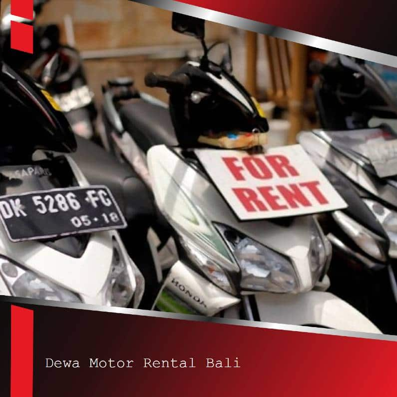 Ubud bike rental - Rent Bike Ubud | Profesional Low Budget Ubud Bike Rental
