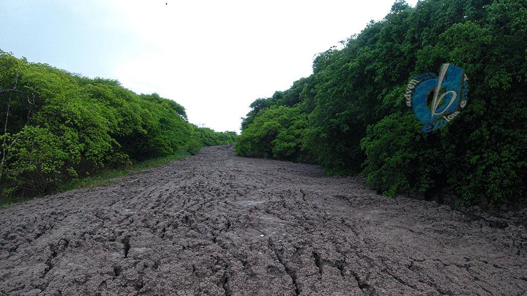 Anglais Point Mud Volcano