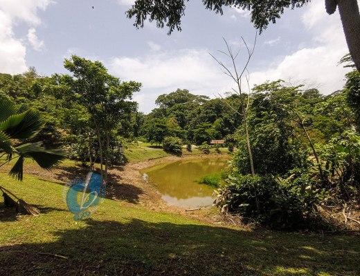 La Vega Estate