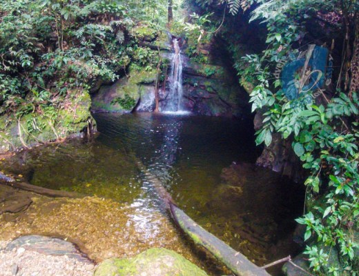 Upper Maracas Waterfall