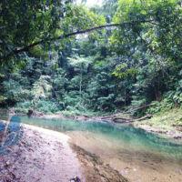 Upper North Oropouche