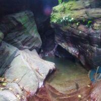 Covigne River Gorges