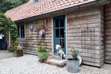 Schuur landelijke stijl stenen hond