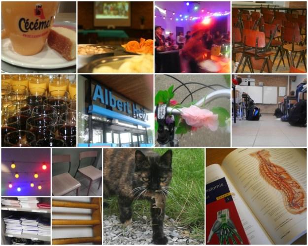 2015 09 14 B week in beelden