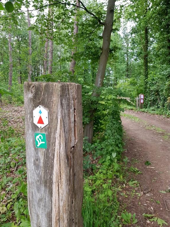 Deurne/Diest vlonderpaden wandeling