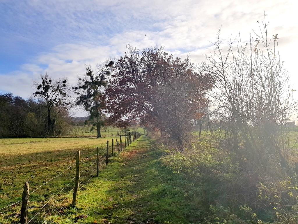 Landschap rond Alden Biesen