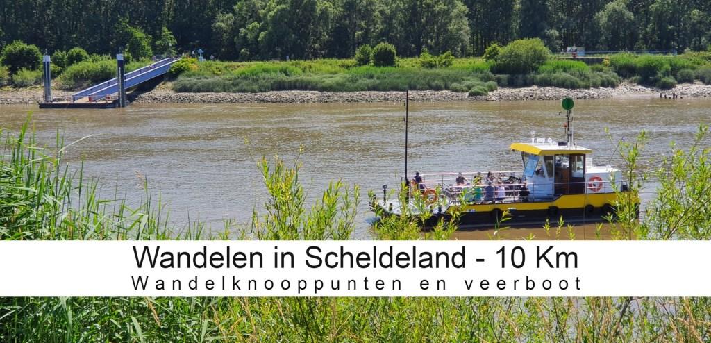Wandeltip Scheldeland