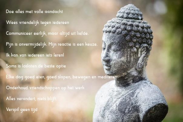 Ik vatte boeddha's business samen in 10 aandachtspunten voor mezelf.