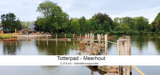 Totterpad Meerhout