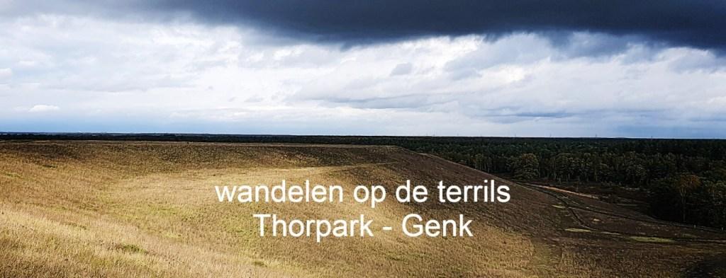 Wandeltip Thorpark terrils