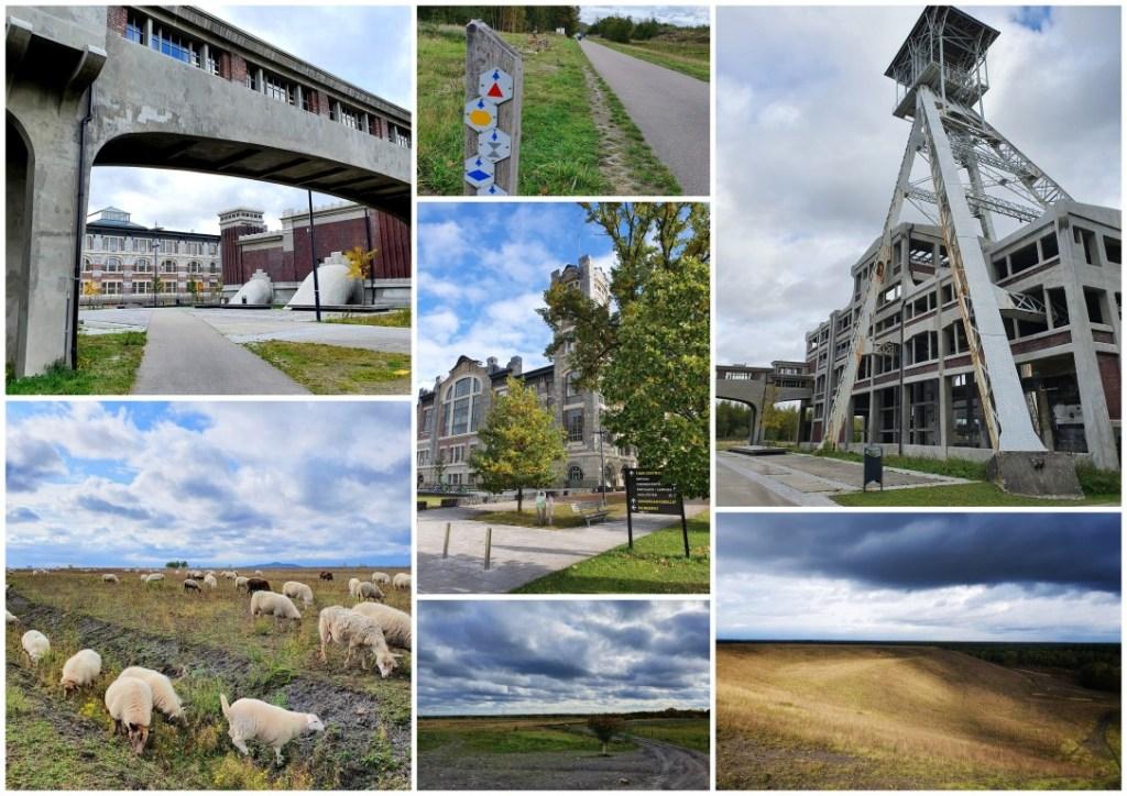 collage wandeling Thorpark en terrils
