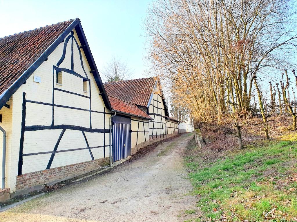 Demervalleiwandeling in Hoeselt typische huizen