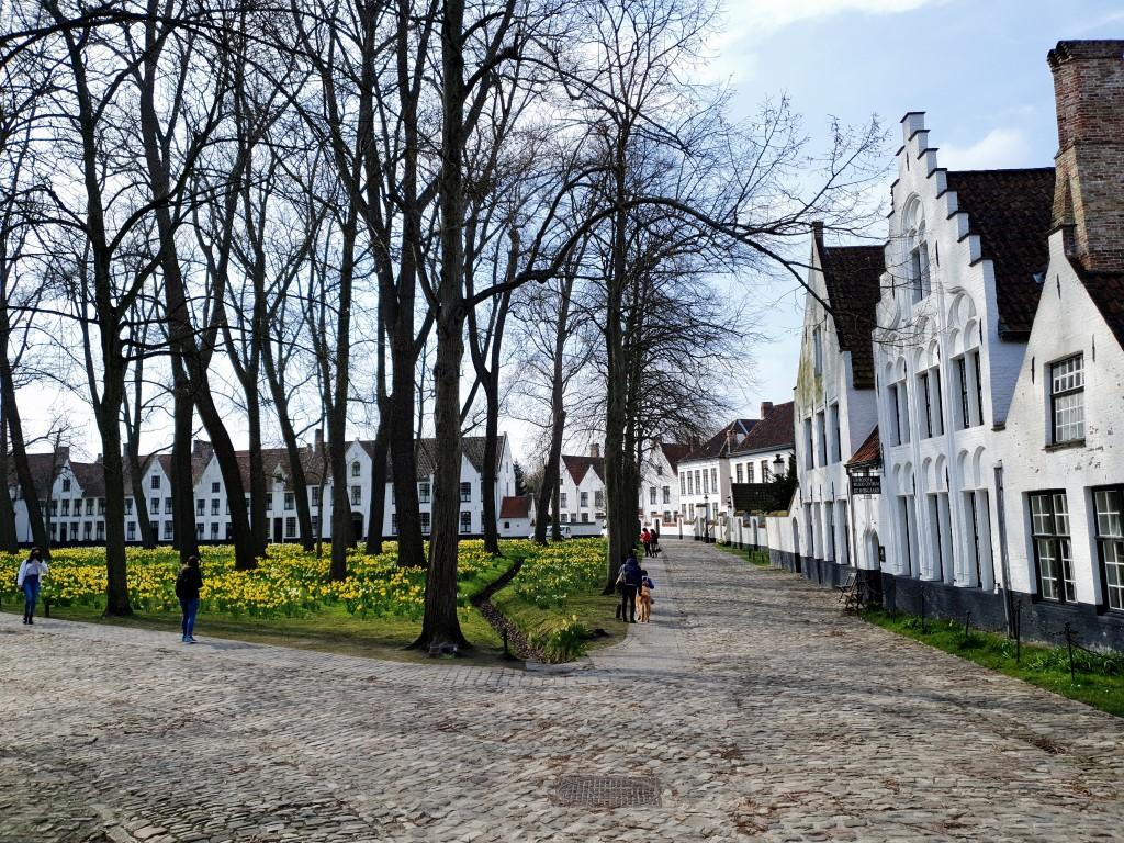 stadswandeling Brugge