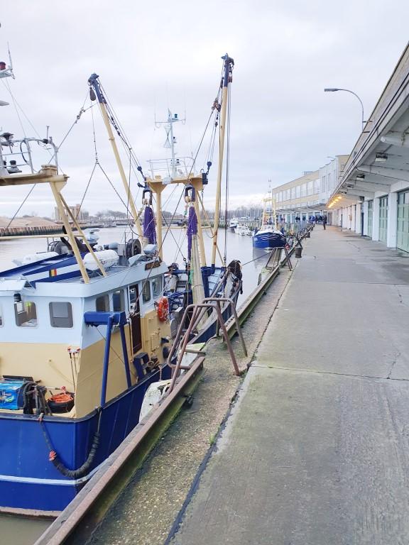 Vismijn Nieuwpoort - wandeling