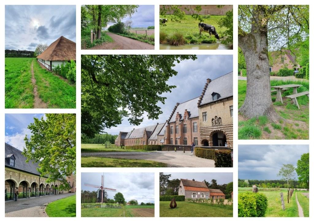 Collage wandeling abdij van Tongerlo