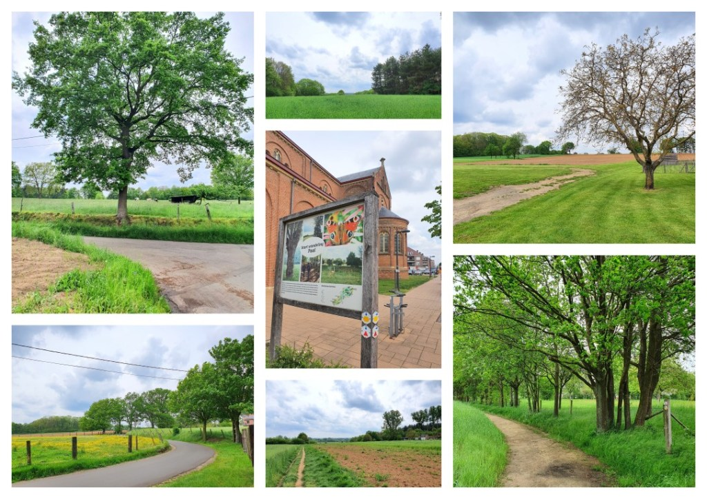 collage wandeling Paal