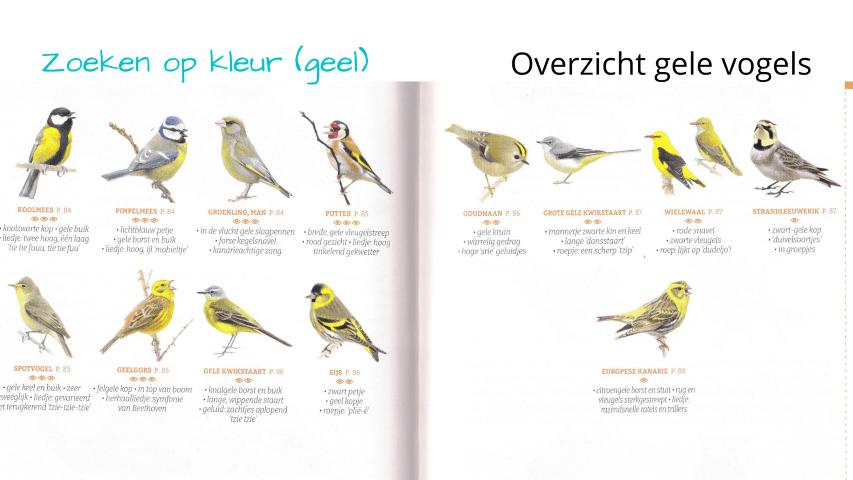 De Gewiekste Vogelgids: zoeken op kleur