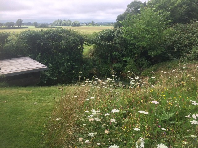 Wild garden in flower and in perfect harmony with its stunning surroundings, Clay Hill, Sussex
