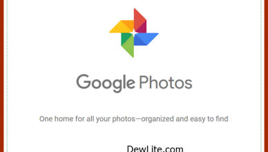 Google Photos App Download For Android, iOS And PC