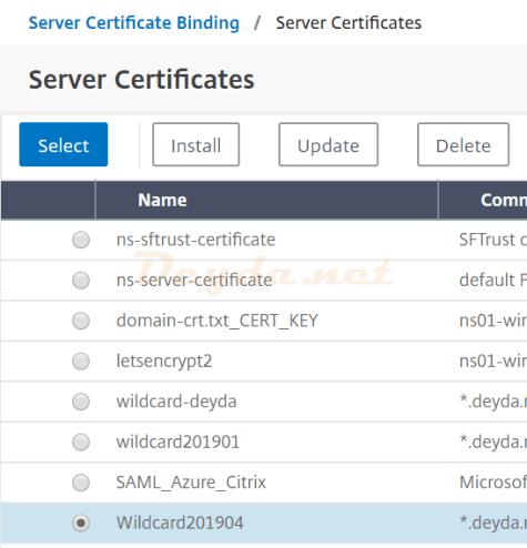 Server Certificate Binding Server Certificates Wildcard