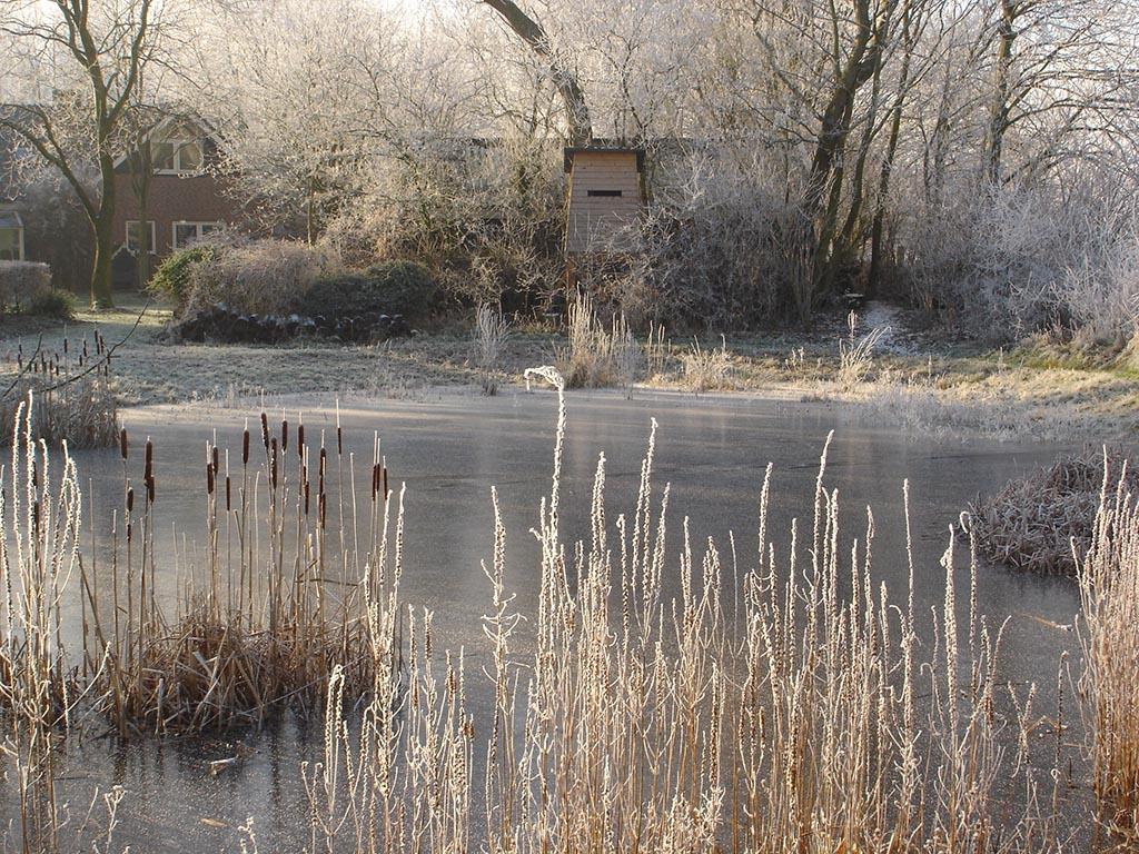 De ZintuigenTuin - Seizoen -Winter - (33)