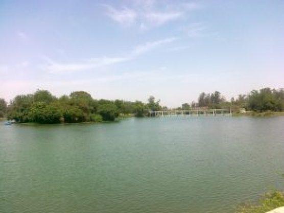 tilyar lake zoo rohtak pictures5