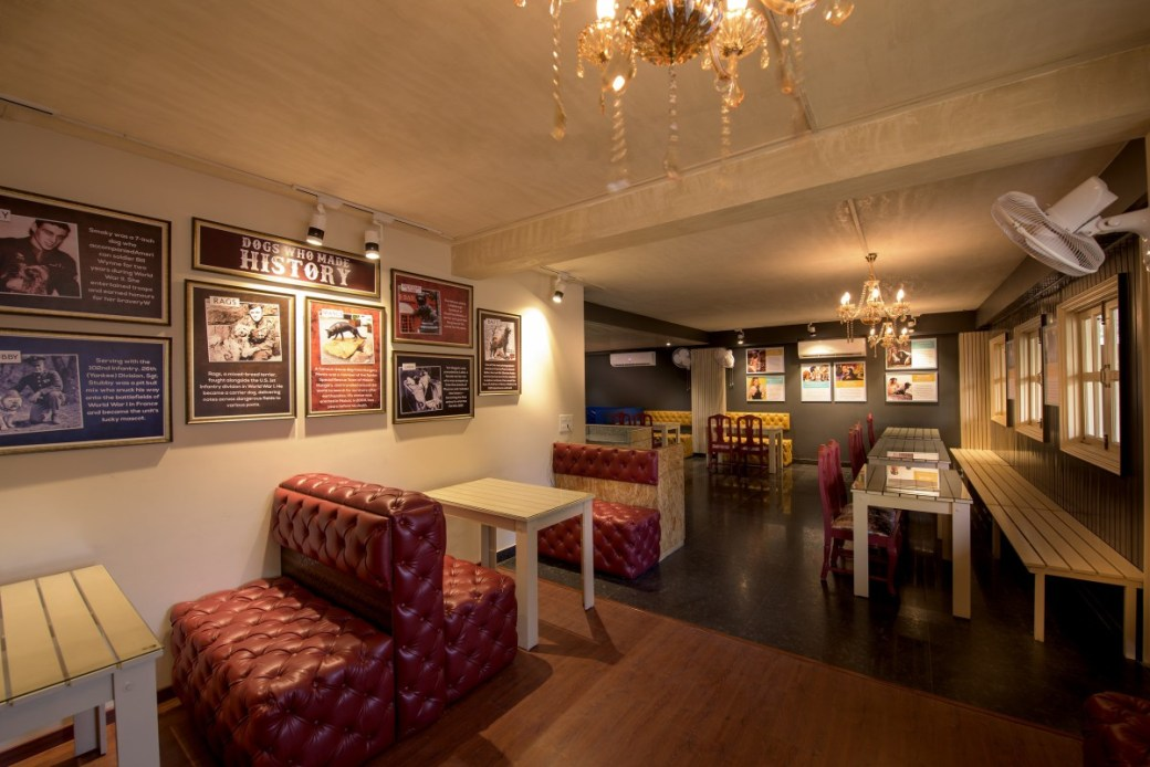 India's First Luxury Pet Hotel And Cafe In Gurgaon