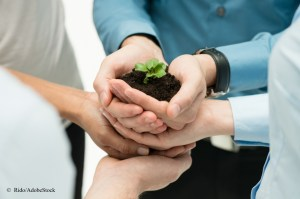 plant in people's hands represents business growth with copyright